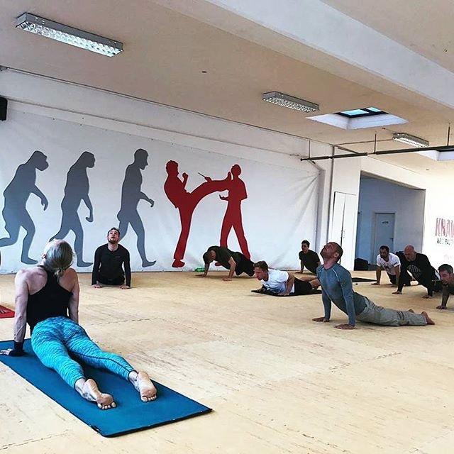 KRAVolution Instructoren Yoga