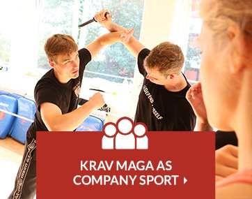 Krav Maga as company sport